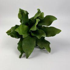 Kunstpflanze grün